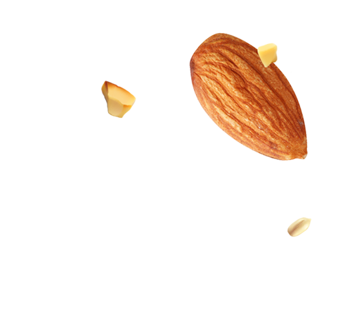 http://pastry.bold-themes.com/wp-content/uploads/2017/10/almond_seed_landing.png